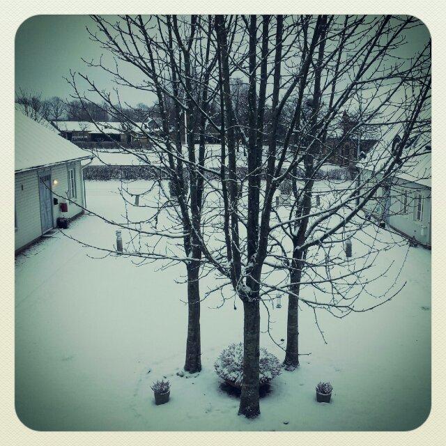 Vackert snölandskap från sovrumsfönstret på första advent