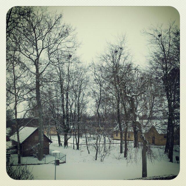 Vackert snölandskap från köksfönstret på första advent