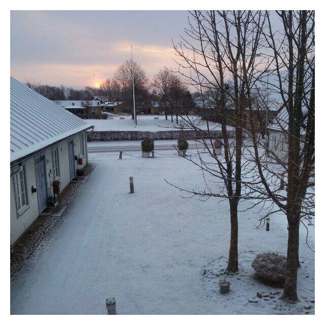 Snö på gården