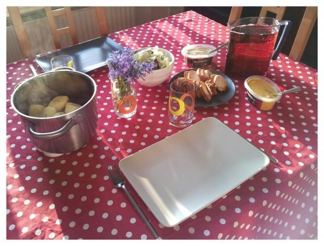 Dillkokt färskpotatis serverad med dalsjöfors kött - Grill-cobra bbq, sallad, rydbergs såser och lingondryck