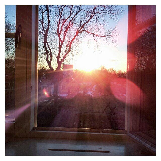 Vårkänslor, mitt könsfönster svämmar över av sol
