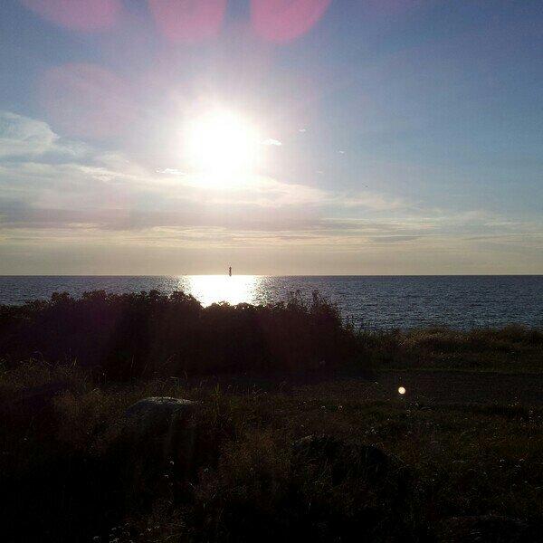 Solnedgång vid Viken strand