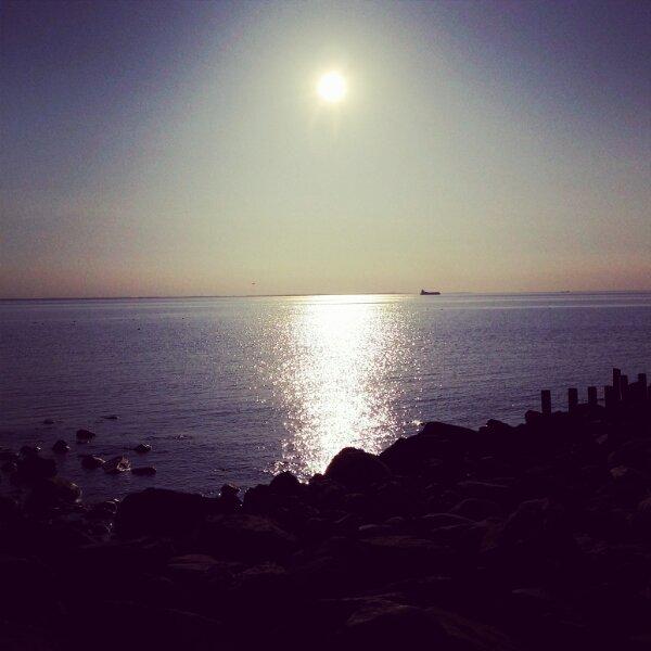 Öresunds kusten