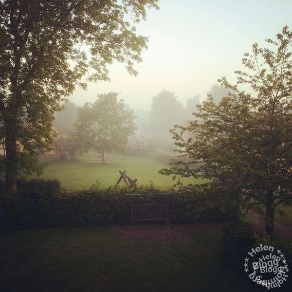 En väldigt tidig disig morgon på landet, utsikt från mitt köksfönster i Mörarp