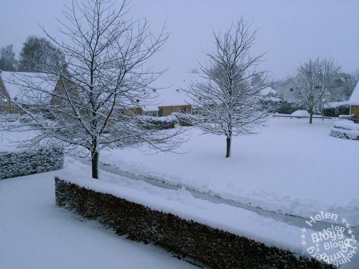 På baksidan ligger snön i tjocka läger på häckar och träd