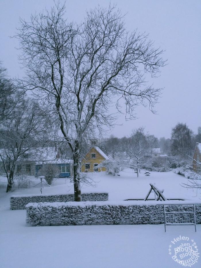 I bakgrunden skymtas Mörarps församlingshem i snö