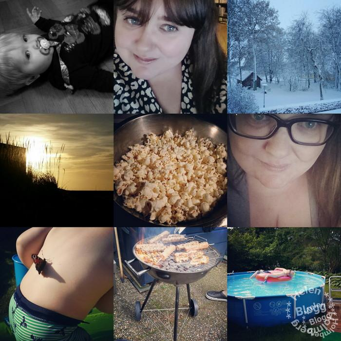 Höjdpunkter från 2015